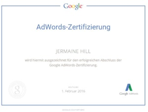 Google Adwords Professional Suchnetzwerk 2016